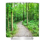 A Walk In The Woods Shower Curtain