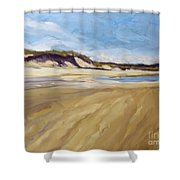 A Walk On The Beach Shower Curtain by Colleen Kidder