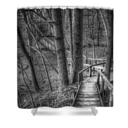 A Walk Through The Woods Shower Curtain