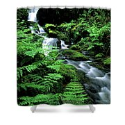 A Waterfall In Redwood National Park Shower Curtain