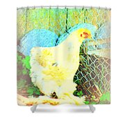 A Wet Hen In Its Own Little Paradise  Shower Curtain