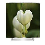 A White Heart Shower Curtain