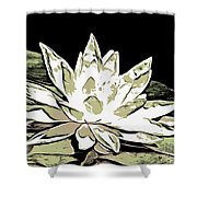 A  White Water Lily Shower Curtain