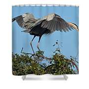 A Winged Stance Shower Curtain