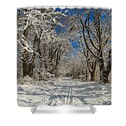 A Winter Road Shower Curtain