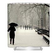 A Winter Stroll Shower Curtain