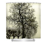 A Winter Touch Shower Curtain
