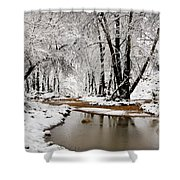 A Winter Walk  Shower Curtain