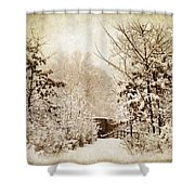 A Winter's Path Shower Curtain