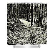 A Winter's Trail Shower Curtain
