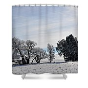 A Wintery Day Shower Curtain