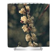 A Wish For You Shower Curtain by Laurie Search