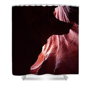 A Wolf In Antelope Canyon Shower Curtain
