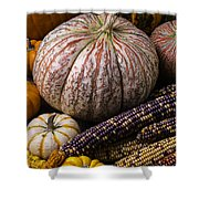 A Wonderful Autumn Harvest Shower Curtain