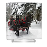 A Wonderful Day For A Sleigh Ride Shower Curtain