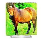 You Always Deserved A Wonderful Life  Shower Curtain