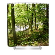A Woodland Trail Shower Curtain