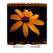 A Yellow Burst Of Sunshine Floral Photography Shower Curtain