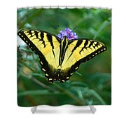 A Yellow Butterfly Shower Curtain