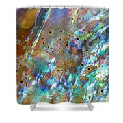 Abalone Abstract3 Shower Curtain