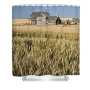 Abandoned Farmhouse In Wheat Field Shower Curtain