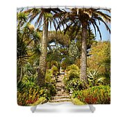 Abbey Gardens Of Tresco On The Isles Of Scilly Shower Curtain