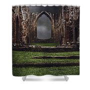 Abbey Steps Shower Curtain by Amanda Elwell