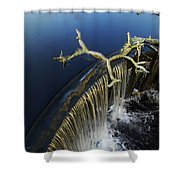 Abbott's Mill Spill Shower Curtain