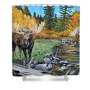 Above The Lake ..moose Shower Curtain
