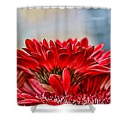 Above The Rest By Diana Sainz Shower Curtain