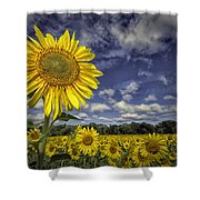 Above Them All Shower Curtain