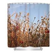 Abril Shower Curtain