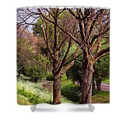 Absorbing Sun. Spring Has Arrived. Netherlands Shower Curtain