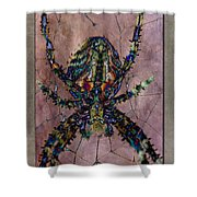 Abstrachid 3 Shower Curtain