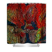 Abstract - Emotion - Annoyance Shower Curtain