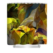Abstract 042113 Shower Curtain