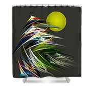 Abstract 051013 Shower Curtain