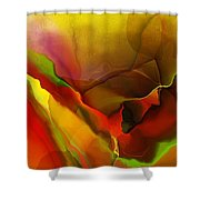 Abstract 070213 Shower Curtain