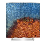 Abstract 10 Shower Curtain