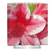 Abstract 106 Pink Painterly Flowers Shower Curtain