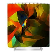 Abstract 120412 Shower Curtain