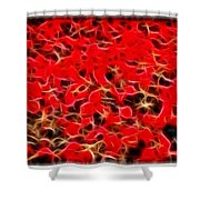 Abstract 124 Red Flowers Shower Curtain