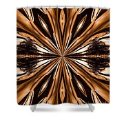 Abstract 141 Shower Curtain