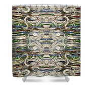 Abstract 173 Shower Curtain