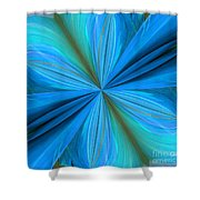 Abstract 221 Shower Curtain