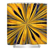 Abstract 227 Shower Curtain