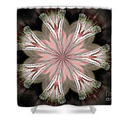 Abstract 261 Shower Curtain