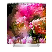 Abstract 272 Shower Curtain