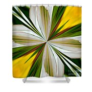 Abstract 296 Shower Curtain