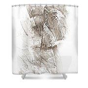 Abstract 400-08-13 Marucii Shower Curtain